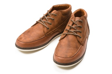 Zapa Barajas Mid lll Chestnut Pointer
